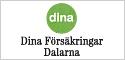 dina_banner